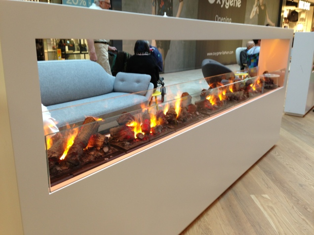 "The ""open fire"" (no real fire at all, just looks like it) in one of the lounge areas."