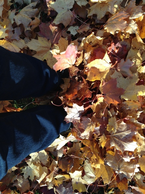 Love walking in big piles of leaves.